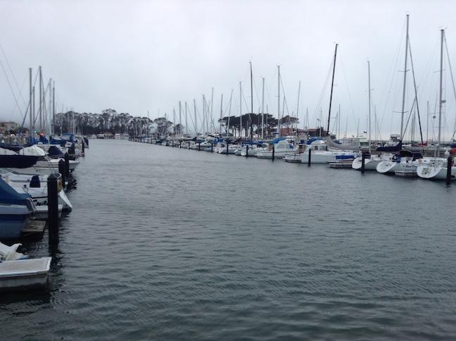 marina yacht harbor 2