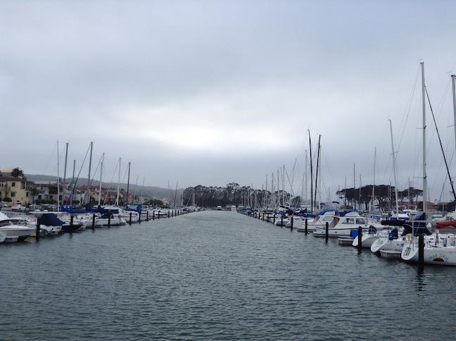 marina yacht harbor 5