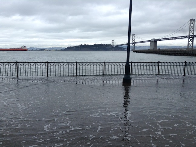 king tide at pier 14, fencing on bay